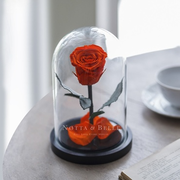 Оранжевая роза в колбе - Mini
