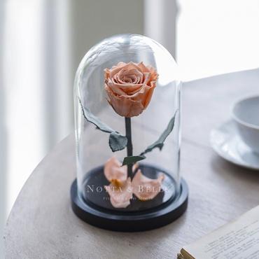 Персиковая роза в колбе - Mini