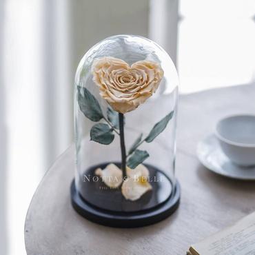 Роза в колбе цвета шампань в форме сердца - Premium