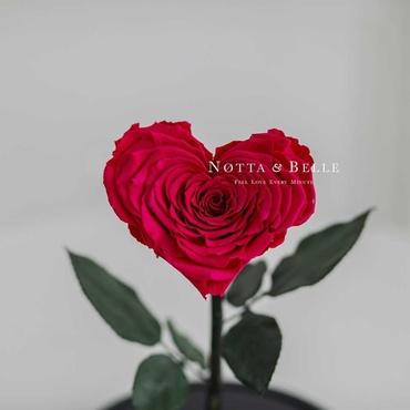 Бутон в форме сердца розы в колбе цвета фуксии - Premium