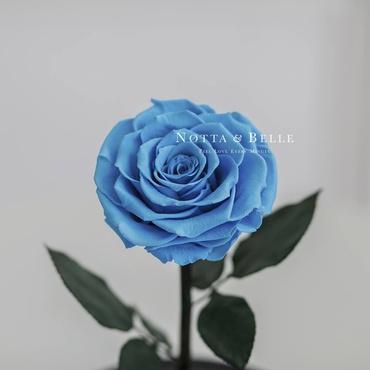 Бутон голубой розы в фигурной колбе - Premium X