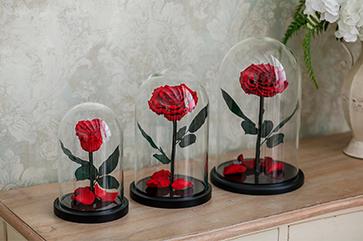 https://nottabelle.com/de/ewige-rose-im-glas// এর ছবির ফলাফল