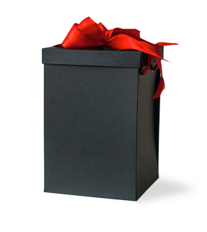 Gift box without logo